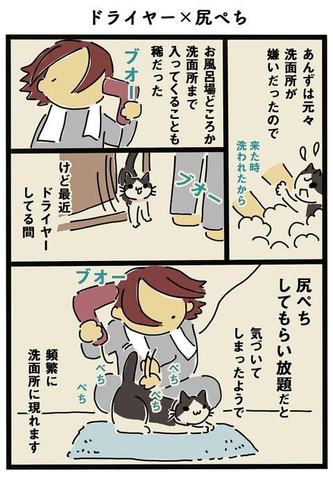 iwako_cat_300