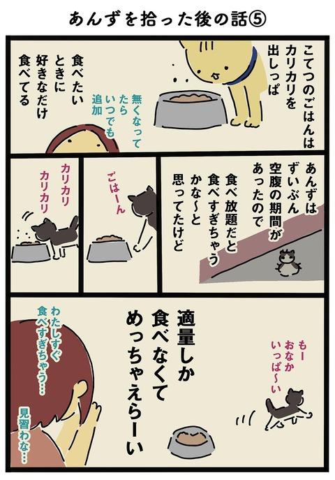 iwako_cat_197