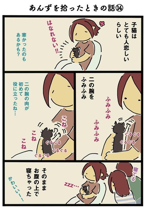 iwako_cat_163