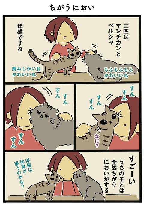 iwako_cat_251