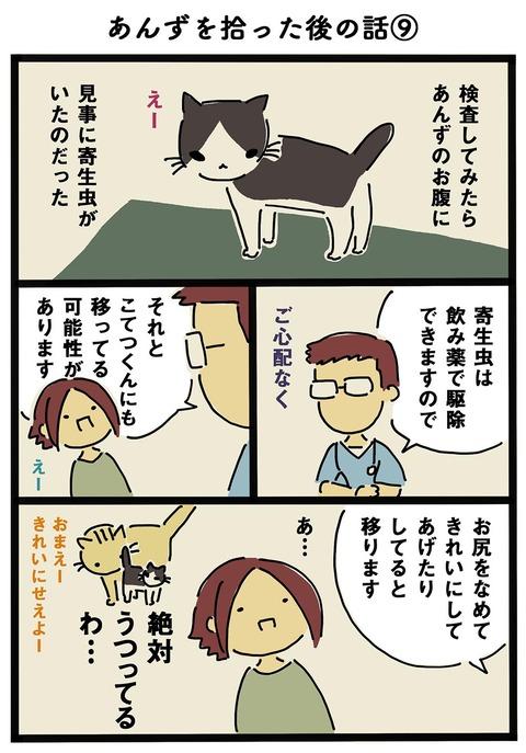 iwako_cat_201