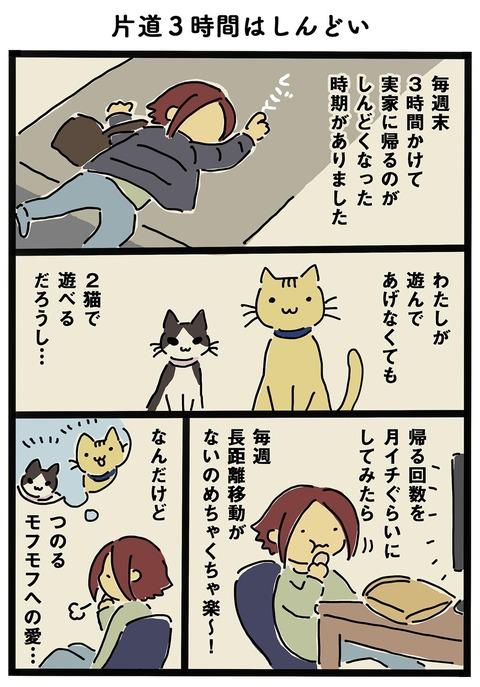 iwako_cat_264
