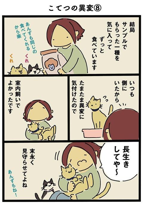 iwako_cat_295