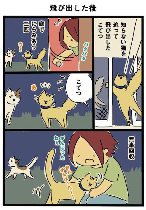 iwako_cat_370
