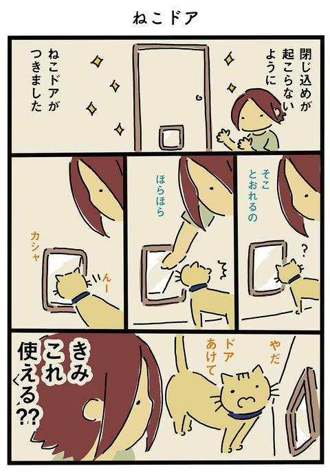 iwako_cat_107