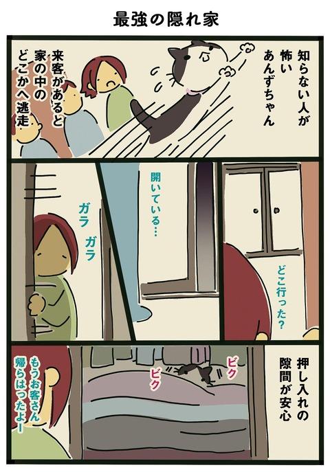 iwako_cat_362