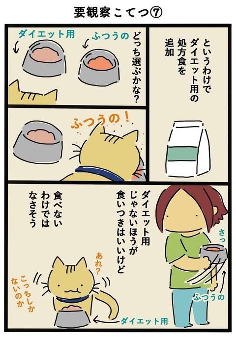 iwako_cat_408