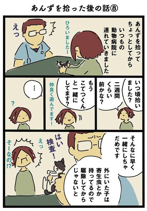 iwako_cat_200