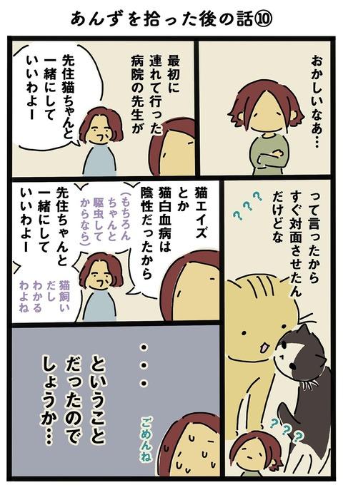 iwako_cat_202