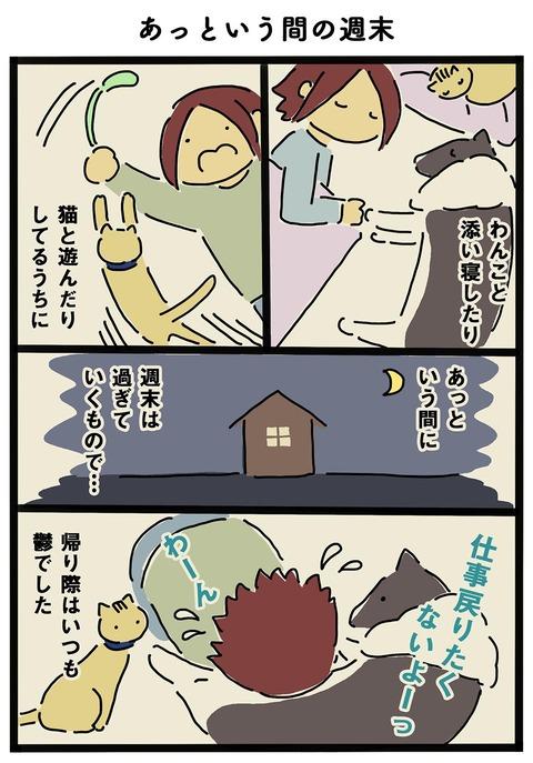 iwako_cat_137