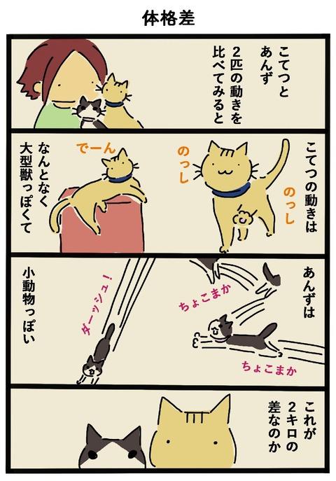 iwako_cat_460