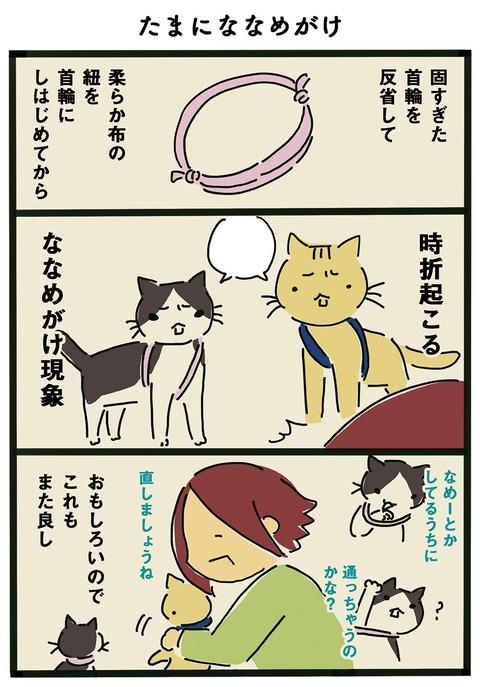 iwako_cat_357