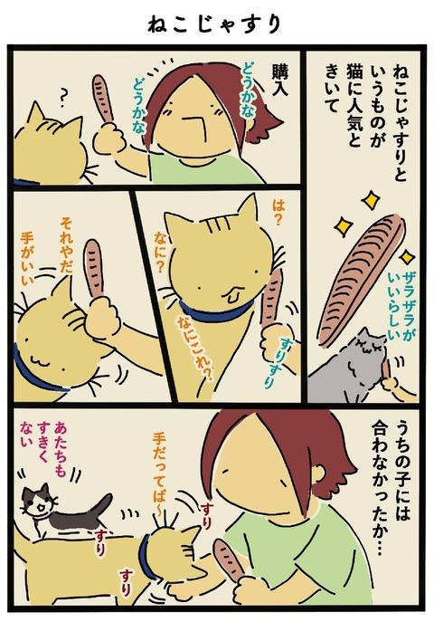 iwako_cat_459