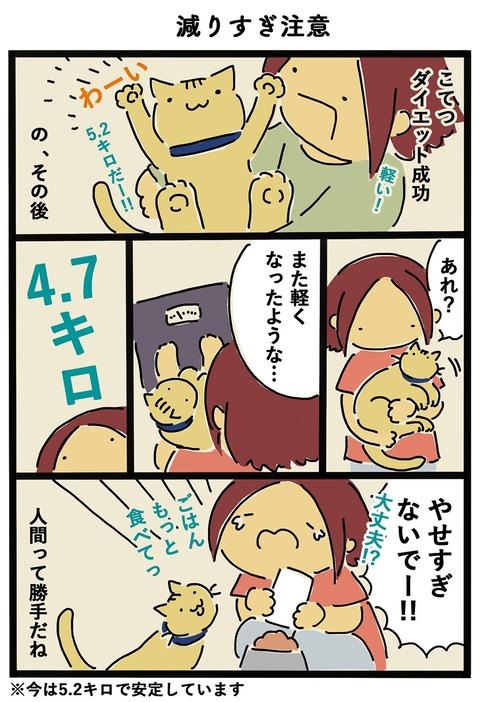 iwako_cat_418