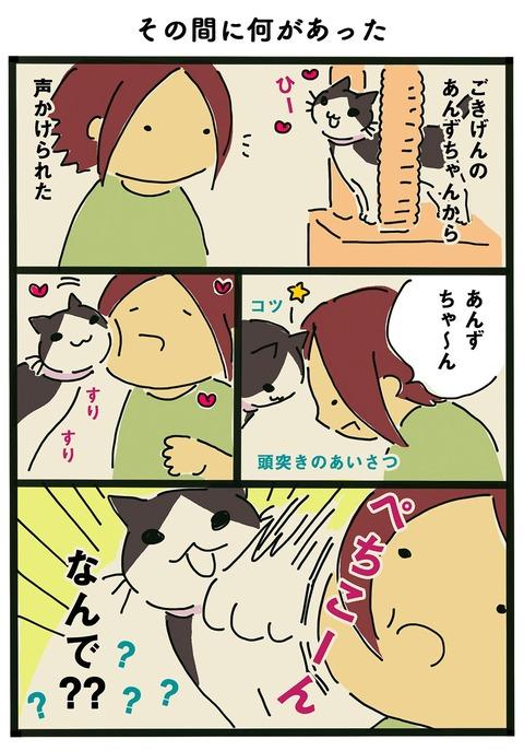 iwako_cat_355
