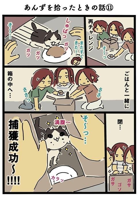 iwako_cat_160