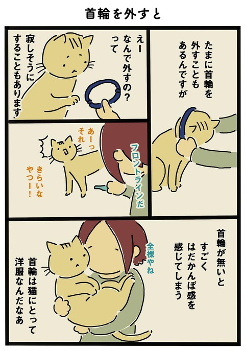 iwako_cat_220
