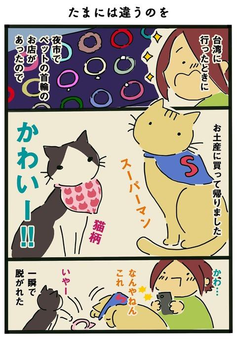 iwako_cat_359