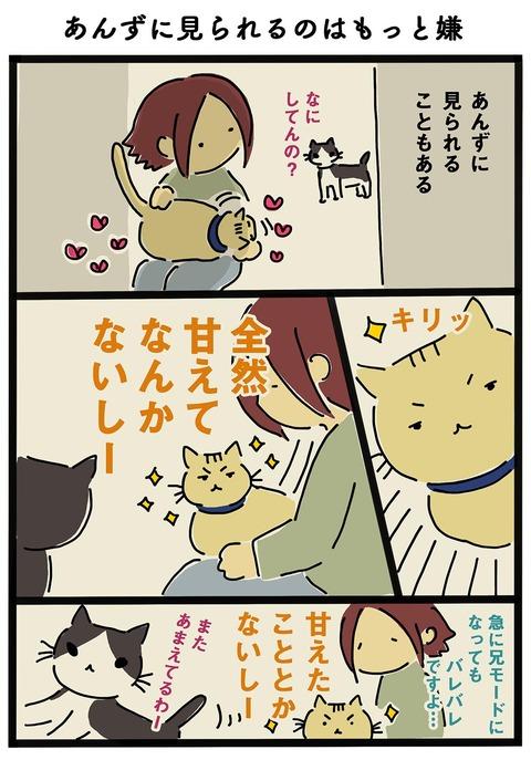 iwako_cat_214