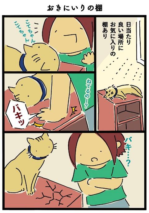 iwako_cat_461