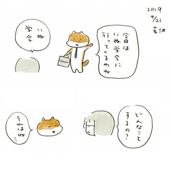 20190421_inu_01