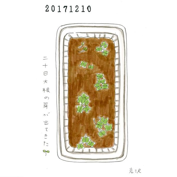 20171210_nikki