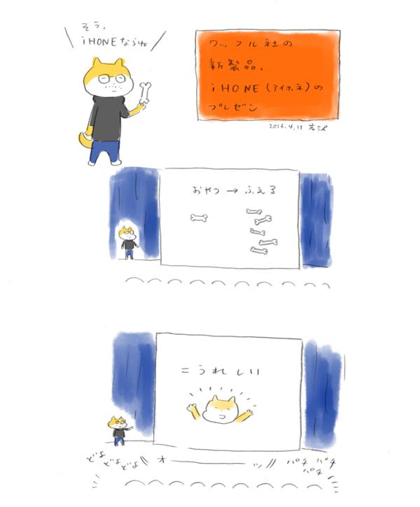 20160411_inu