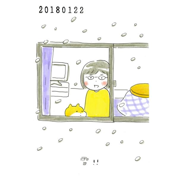20180122_nikki
