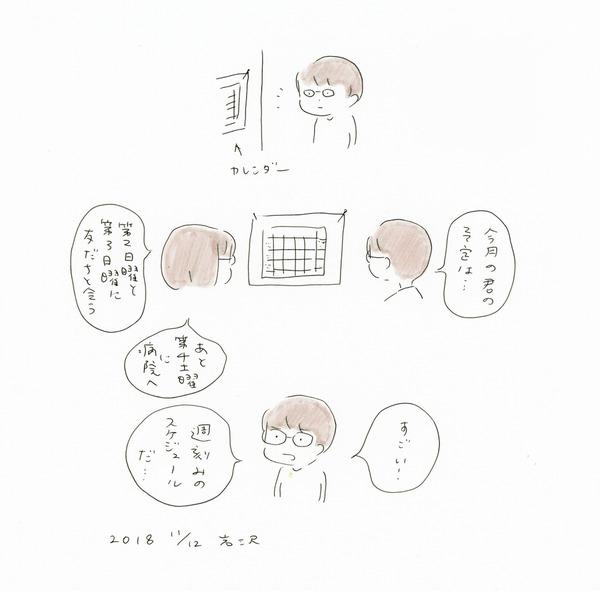 20181112_nikki