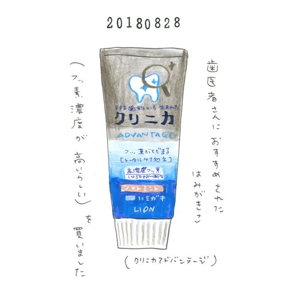 20180828_nikki_hamigaki