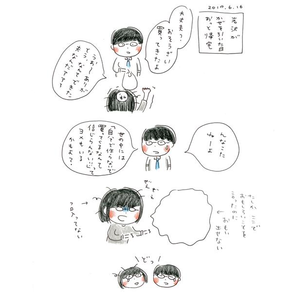 20170616_nikki_02