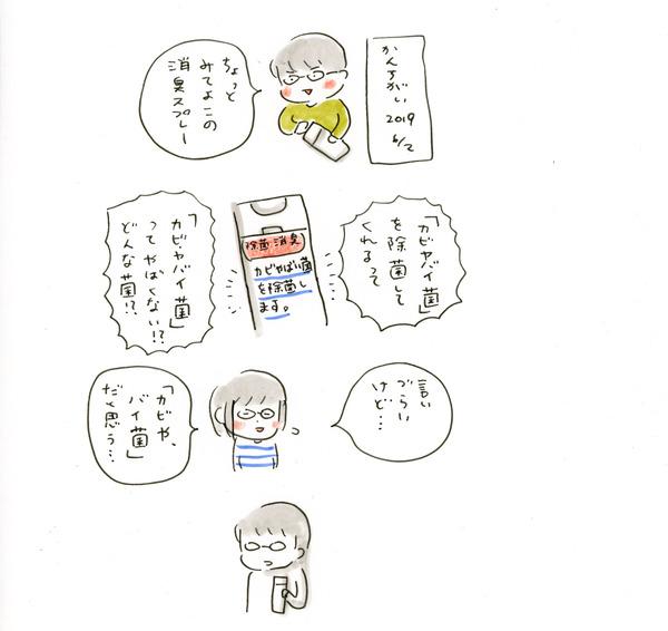 20190602_nikki_02