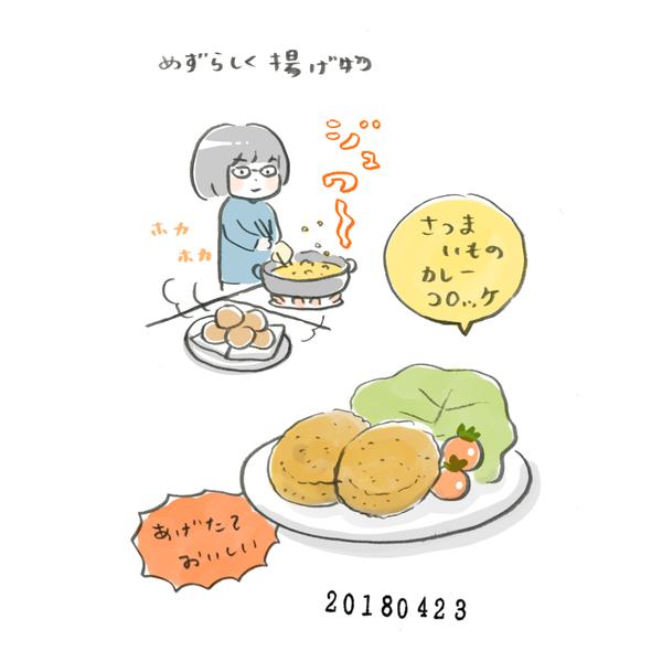 20180423_nikki