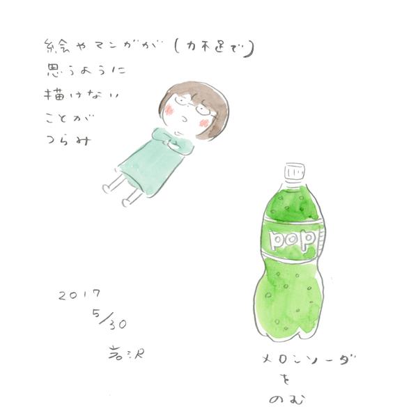 20170530_nikki_02