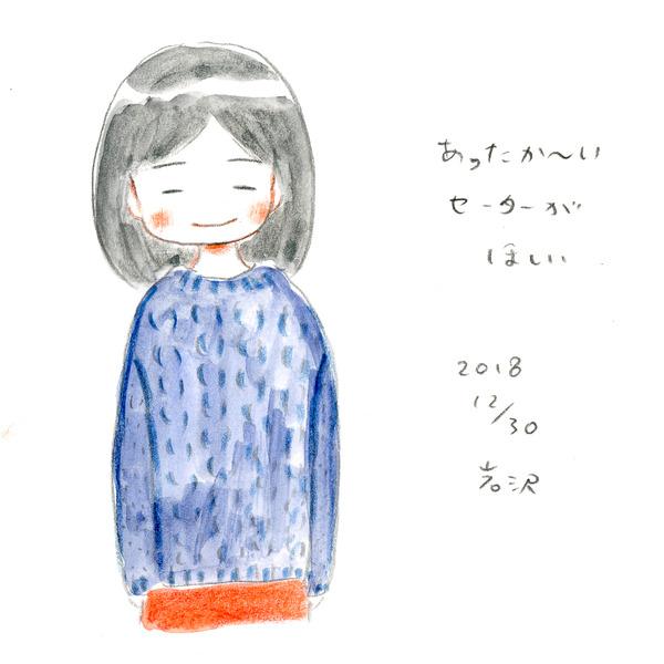 20181230_nikki_02