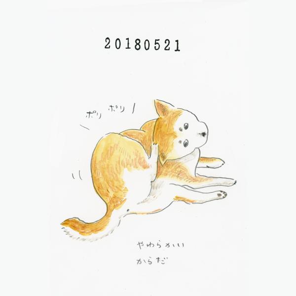 20180521_02_nikki