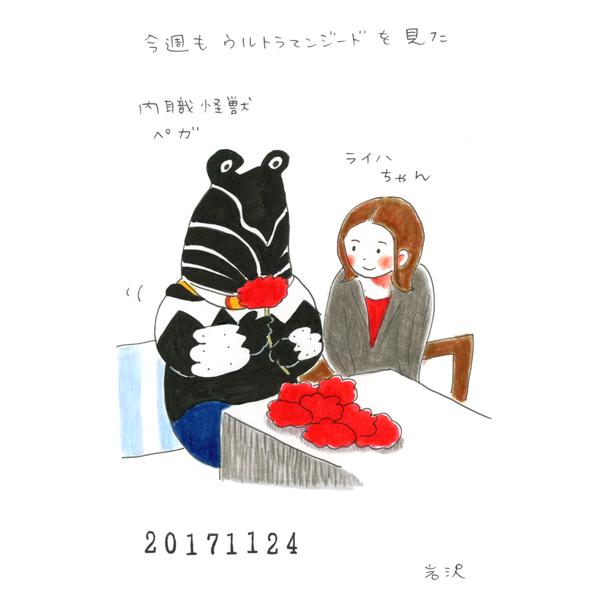 20171124_nikki_shikaku