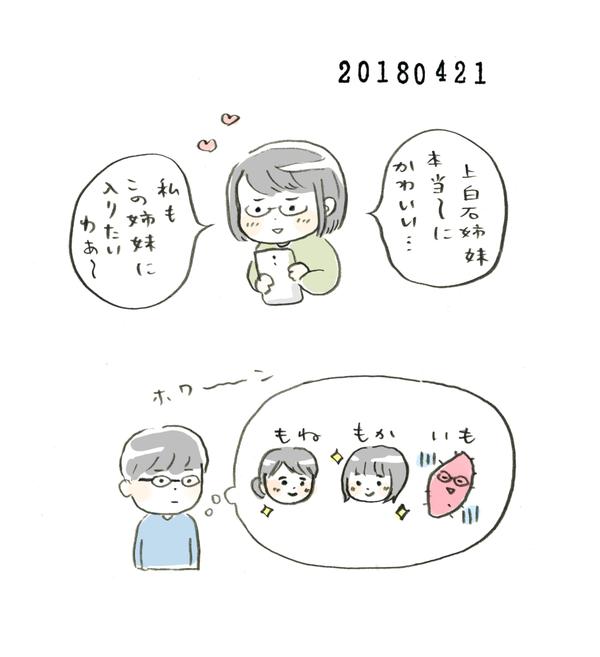 20180421_nikki