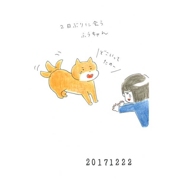 20171222_nikki