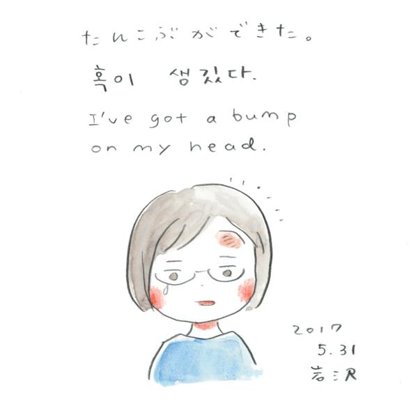20170601_nikki_01