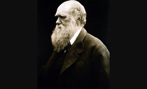 charles-darwin-ate-every-animal-he-ever-discovered-02