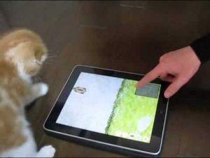 【猫動画】猫もゲームで遊ぶだにゃ!