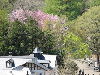 05_21_円山風景
