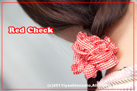 0511red_check