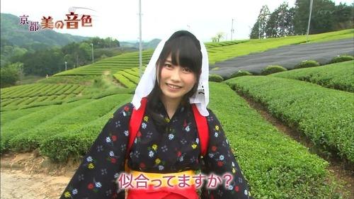 横山由依、茶畑、絣、手ぬぐい