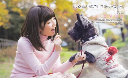 島崎遥香、犬