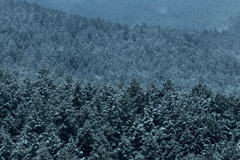 久万高原冬-6