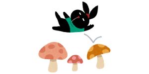 pyoko
