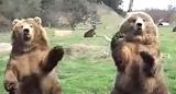 おかえりと手を振るクマ