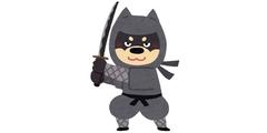 ninja_bad_dog